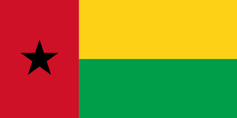 Laboratory Services in Guinea Bissau